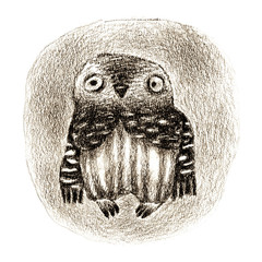 Little Owl Sitting In a Hollow