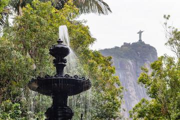 Botanical garden in Rio de Janeiro Wall mural