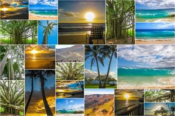 Maui landscapes collage