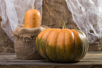 Still life pumpkin and gourd