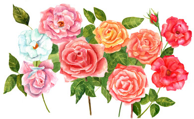 Watercolor bouquet of pink, red, and golden roses, vintage style