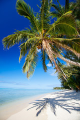 Wall Mural - Beautiful tropical beach at exotic island in Pacific