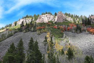 Wall Mural - Ashley National Park Fall Colors