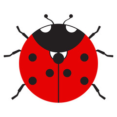 Flat icon ladybug on white background. Isolated. Vector.