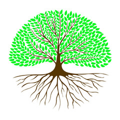 Tree with the root system and green foliage in a circle.
