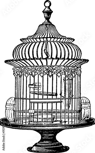 Antique bird cage drawing - photo#46