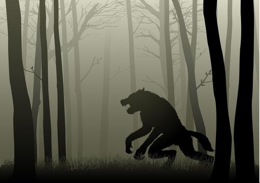 Werewolf In The Dark Woods
