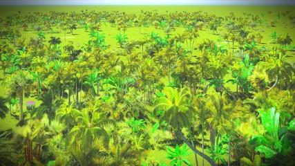 Lush vegetation in jungle