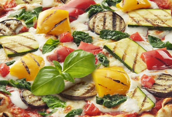 Pizza with Vegetables Detail