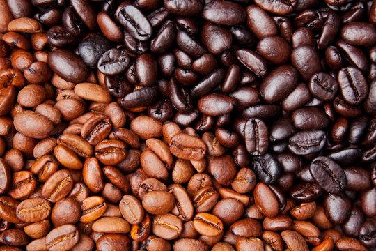 coffee bean background