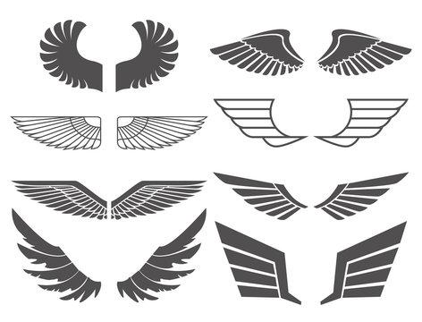 wings set 2
