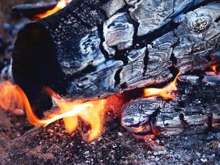 Bright Bonfire Flame