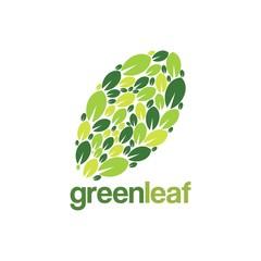 Green Leaf Logo Shaped Leaf Design