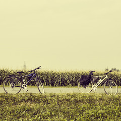 Two bicycles on the road at a corn field. Added color toning