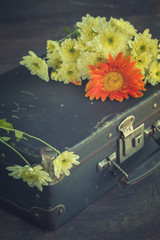 Old suitcase with autumn colors.Toned image. Vintage style. selective focus.