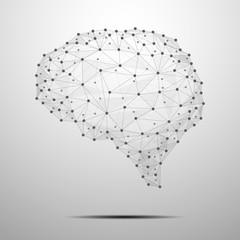 The Brain polygonal