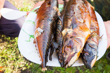 Cooked hot smoked fresh fish