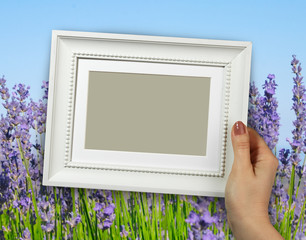 Wooden frame in woman hands. background Lavender