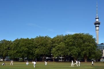 Men play Cricket in Victoria park Auckland, New Zealand