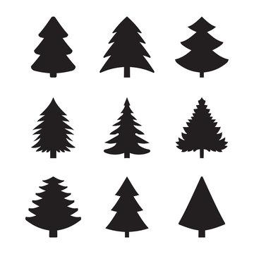 Christmas fir-tree of an icon