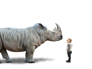 Poster de jardin Rhino to big for me