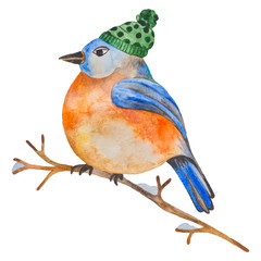 Watercolor bird with a hat