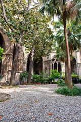 Lush Courtyard Garden at Barcelona Cathedral