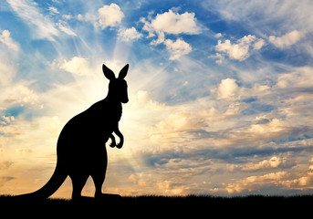 Kangaroo silhouette against a  sky