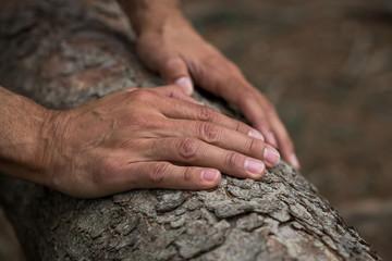Natur Hände