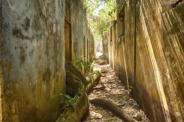 Le Bagne de l'île Saint Joseph-guyane