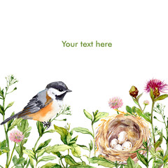 Greeting card with wild herbs, bird and nest. Watercolor card