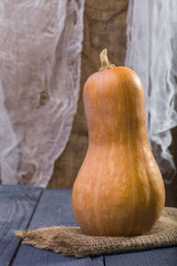 One big whole orange gourd