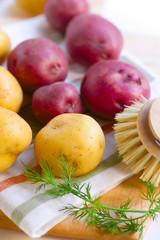 fresh new potatoes on a linen cloth