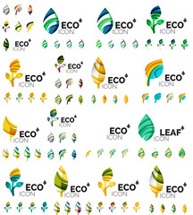 Mega collection of vector green summer concepts - leaves compositions, plants