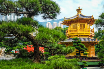 Golden Pavilion Chi Lin Nunnery Temple