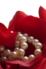 red rose background with pearls