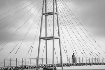 Moine Bouddhiste sur un pont et un oiseau perché