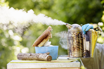 A beekeeper holding a metal smoker, puffing smoke across the top of a hive.