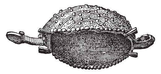 Small golden turtle, vintage engraving.
