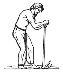 Laborer slave, vintage engraving.
