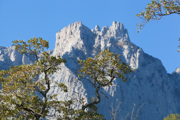Nice view of the top of Mount Ai-Petri in Crimea in autumn