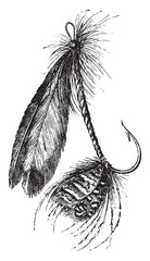 Other form of artificial fly, vintage engraving.
