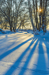 Fototapete - Shadows of trunks of tree on a frozen small river