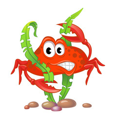 Cute cartoon crab and algae