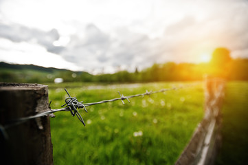 Barbed wire on sunny background