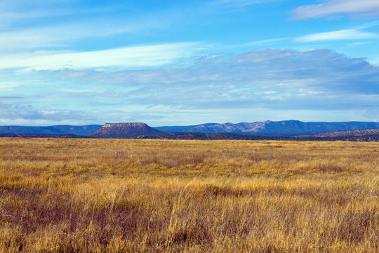 Prairie grasses at Las Vegas National Wildlife Refuge in New Mexico, with Sangre de Cristo Mountains in the distance