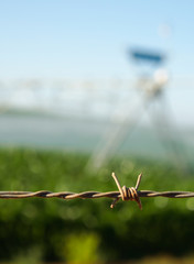 Close up of barbed wire.