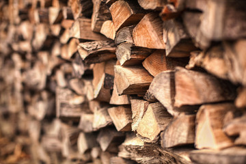 Foto auf Acrylglas Brennholz-textur background of Heap firewood stack, natural wood