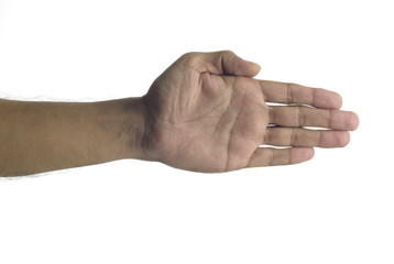 Human Palm on white background shot in studio