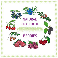Natural healthful berries